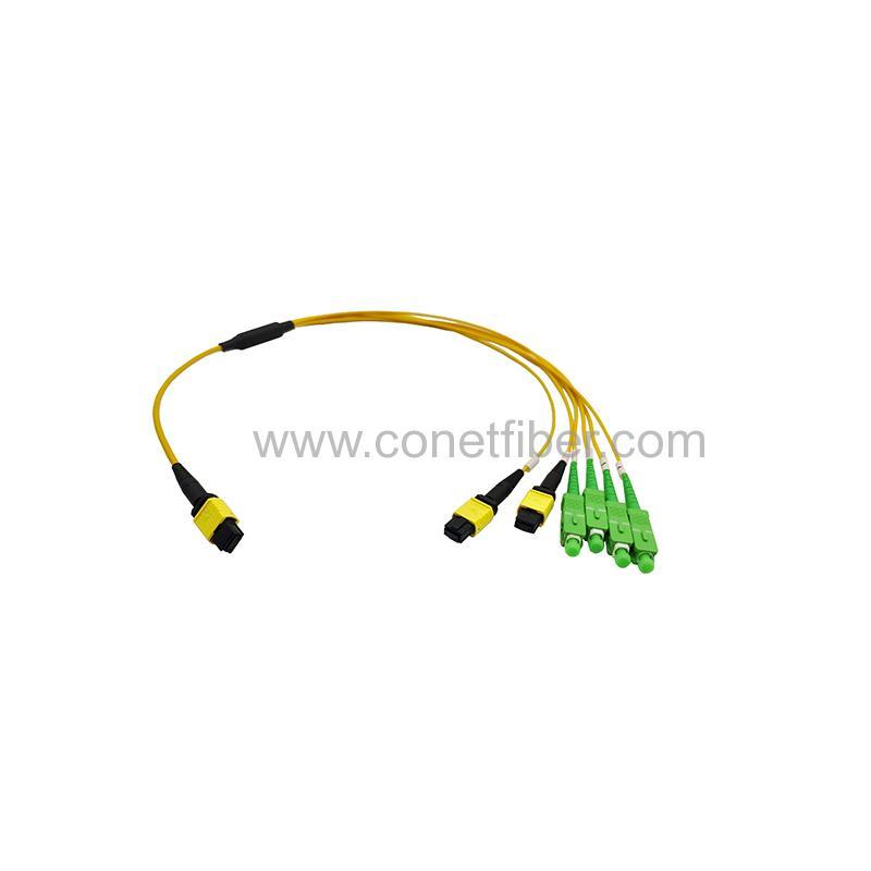 http://www.conetfiber.com/uploadfiles/107.151.154.110/webid1159/source_water/202005/158901575892.jpg